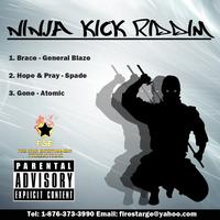 General Blaze (Blaze) - Ninja Kick Riddim Cover Art