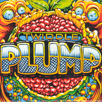 Twiddle - Plump Cover Art