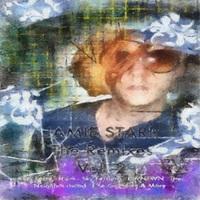 Ernest Vogue - The Remixes Volume 2 (Jamie Starr) Cover Art